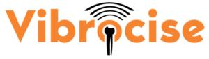 Vibrocise - Word Logo1